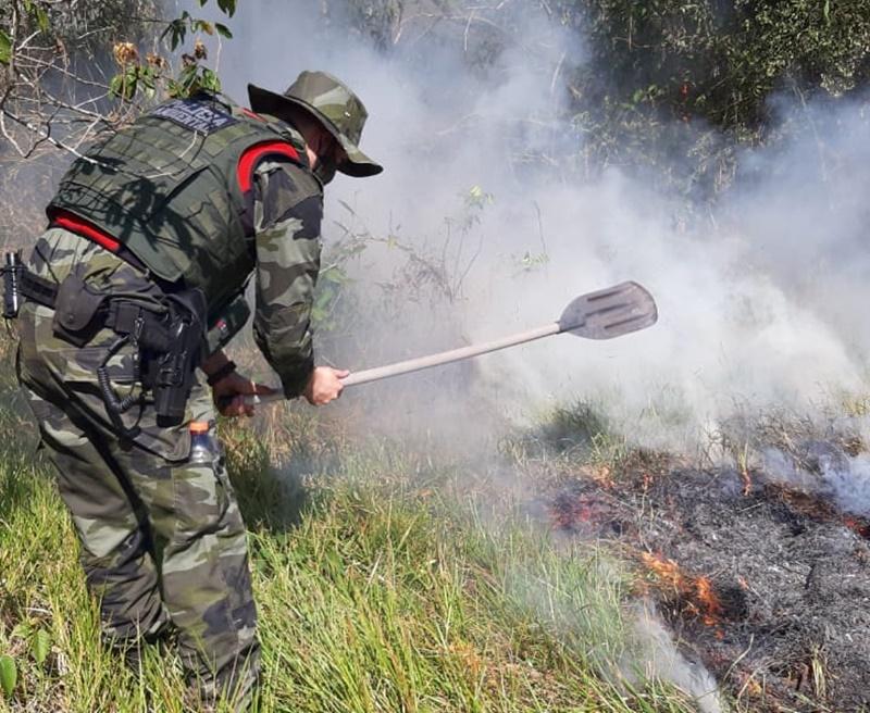 Polícia Ambiental combate incêndio florestal no Parque Nacional de Ilha Grande