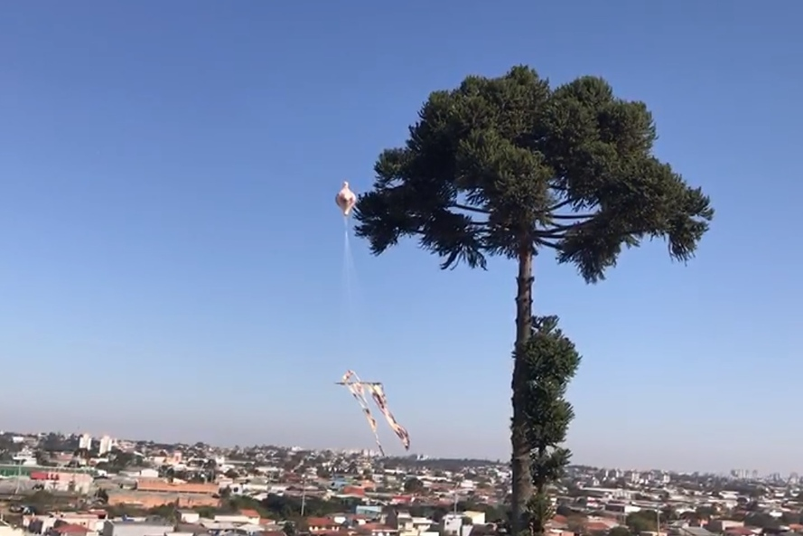 Paraná: Polícia Militar apreende balão que caiu em quintal de residência