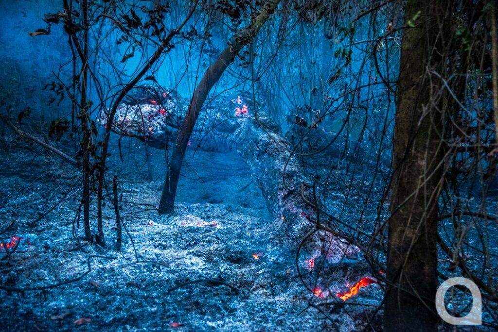 Bombeiros usaram 40 mil litros d'água no 1º dia de combate ao incêndio no bosque do Índio