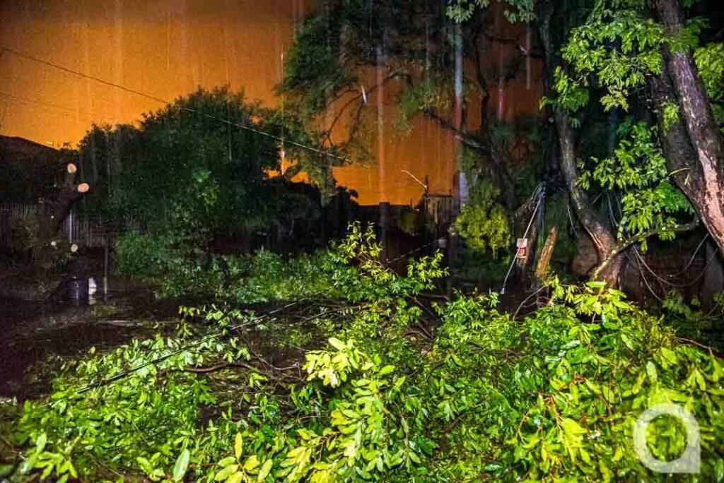 Defesa Civil começa contabilizar estragos deixados pelo temporal em Umuarama